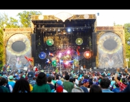 2013 Electric Forest